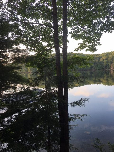 lake view from cottage.JPG